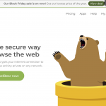TunnelBear VPN Homepage